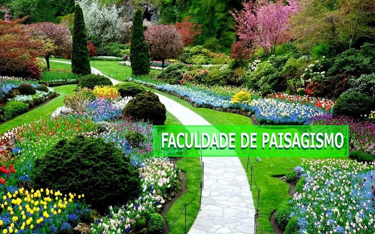 paisagismo-cursos-faculdade Faculdade de Paisagismo - Melhores Cursos, Onde Fazer